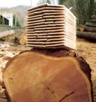 Šindel štípaný - ukázka stromu